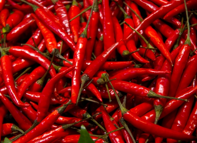 Red_Chillies_(5836682235)